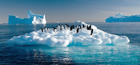 EXAMINING ANTARCTIC SEA ICE
