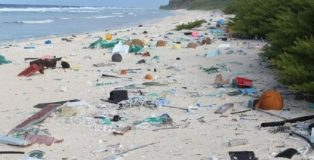Henderson Island_HIGH LEVELS OF PLASTIC RUBBISH