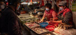 China's Wet Market